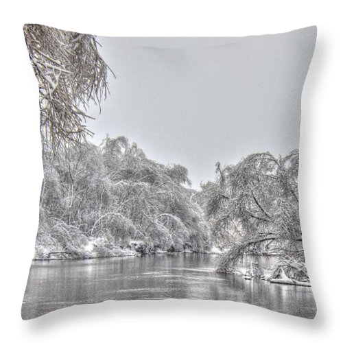 River Throw Pillow featuring the photograph Winter River Scene by M Dale
