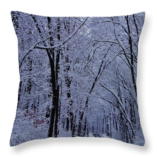 Winter Throw Pillow featuring the photograph Winter Road by Greg Kear