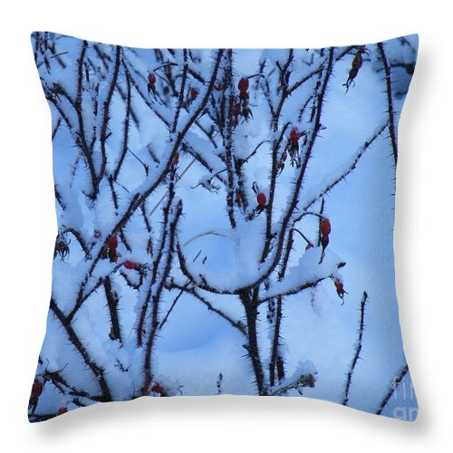 Winter Throw Pillow featuring the photograph Winter Roses by Brian Boyle