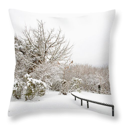 Winter Throw Pillow featuring the photograph Winter Scene by Regina Geoghan