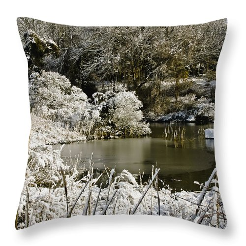Winter Throw Pillow featuring the photograph Winter Scenes 2 by Dennis Coates