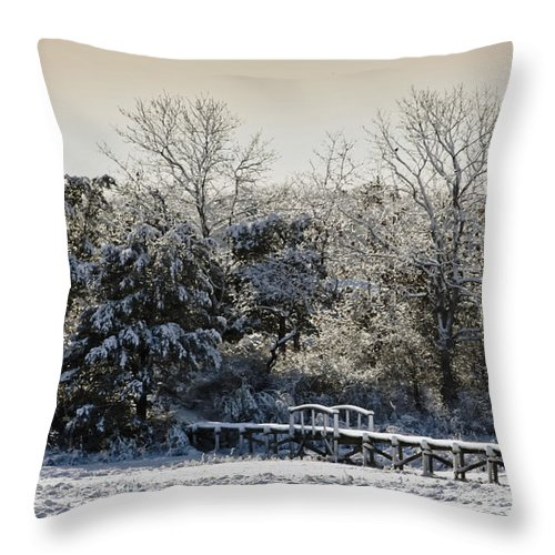 Winter Throw Pillow featuring the photograph Winter Scenes by Dennis Coates