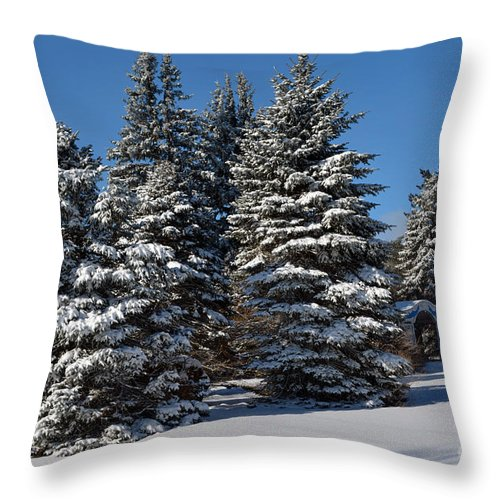 Outdoors Throw Pillow featuring the photograph Winter Scenic Landscape by Gary Keesler