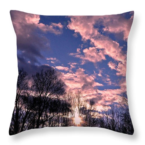 Silhouettes Throw Pillow featuring the photograph Winter Silhouettes by Mary Anne Williams