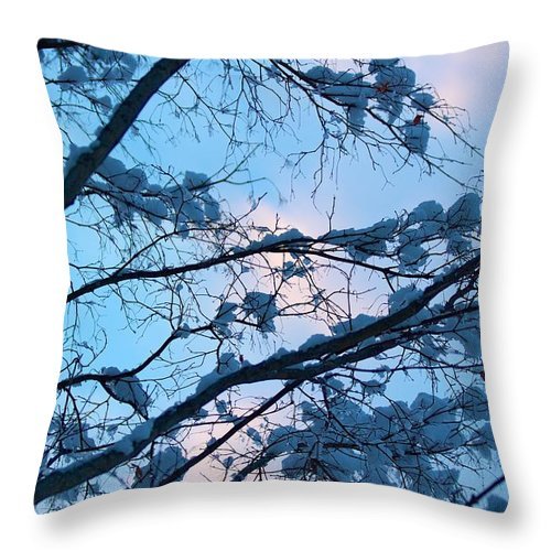 Blue Throw Pillow featuring the photograph Winter Sky And Snowy Japanese Maple by Allan Morrison
