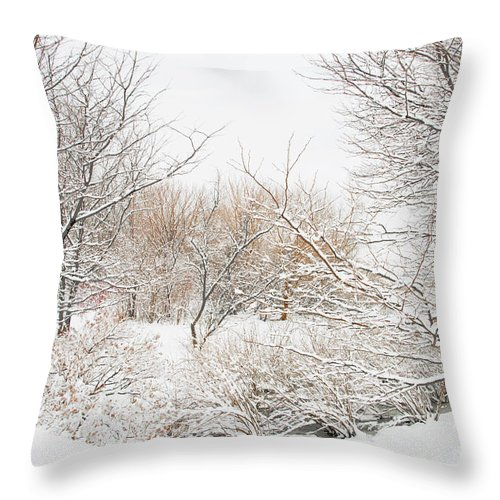 Winter Throw Pillow featuring the photograph Winter Solitude by Regina Geoghan