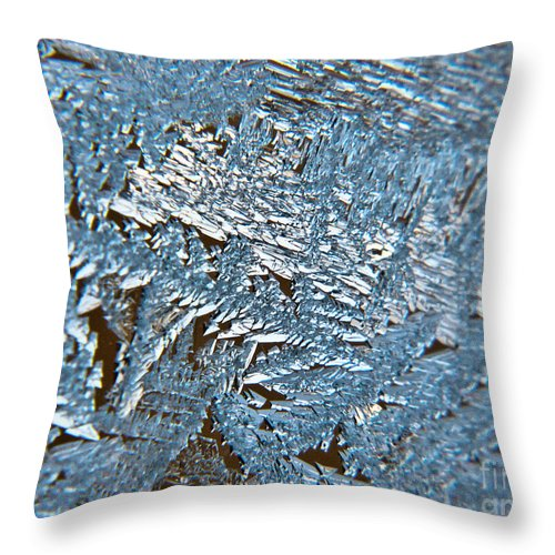 Frost Throw Pillow featuring the photograph Winter Sparkles by Cheryl Baxter