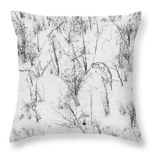 Weed Throw Pillow featuring the photograph Winter Starkness by Diane Macdonald