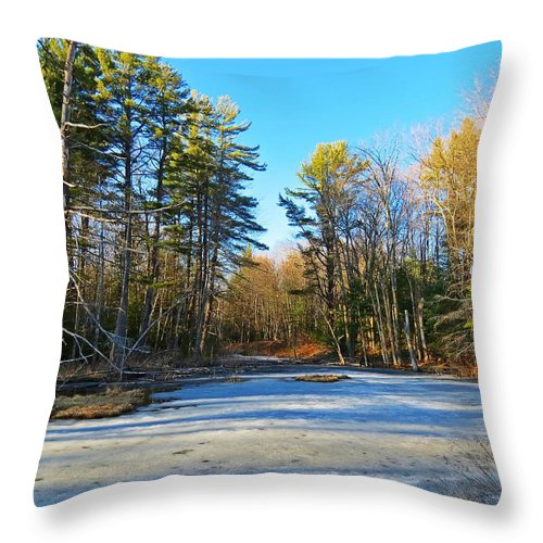 Ice Throw Pillow featuring the photograph Winter To Spring by MTBobbins Photography