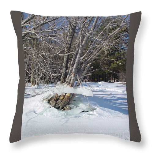 Winter Throw Pillow featuring the photograph Winter Tree Skirt by Nancie Johnson