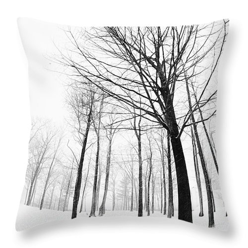 Photograph Throw Pillow featuring the photograph Winter Trees by Jan Tyler