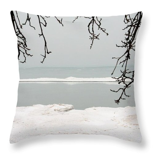 Lake Throw Pillow featuring the photograph Winter Under The Apple Tree by Heather Allen