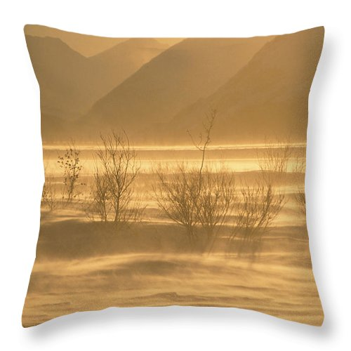 Cold Throw Pillow featuring the photograph Winter Wind Storm W Blowing Snow by Hal Gage