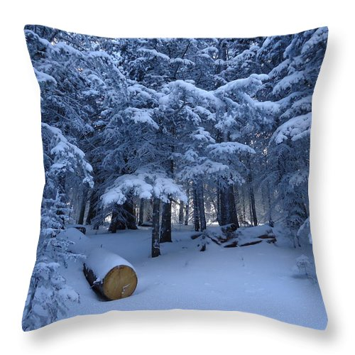 Snow Throw Pillow featuring the photograph Winter Wonderland by Lois  Rivera