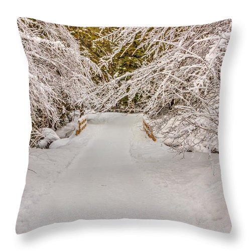 Poland Throw Pillow featuring the photograph Winter Wonderland by Pati Photography