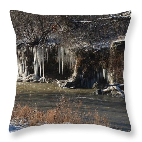 Icicles Throw Pillow featuring the photograph Winter's Artwork by Regine Brindle