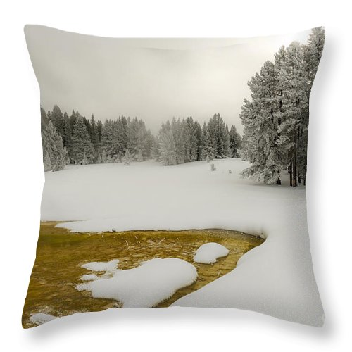 Winter Throw Pillow featuring the photograph Winter's Contrast - Yellowstone National Park by Sandra Bronstein
