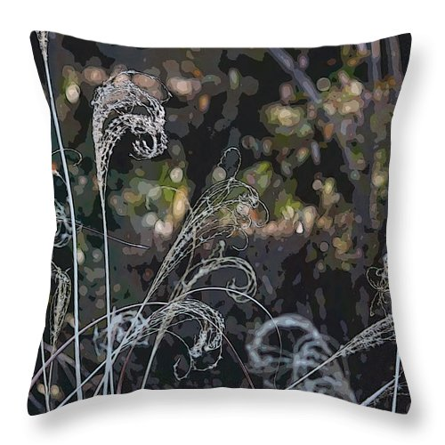 Digital Art Throw Pillow featuring the photograph Winters Flourishes by Suzanne Gaff