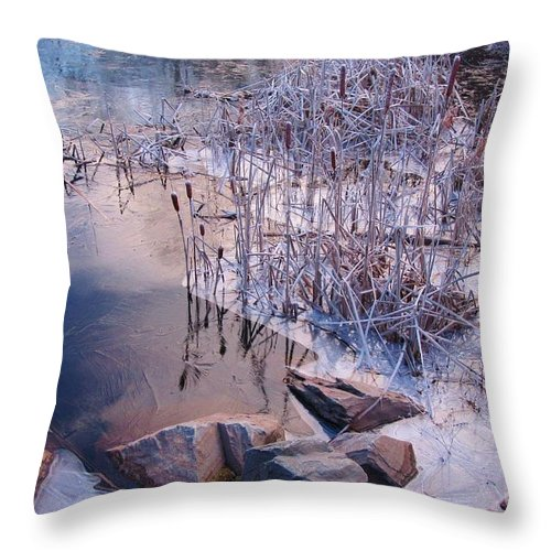Landscape Throw Pillow featuring the photograph Winters Magic by John Malone