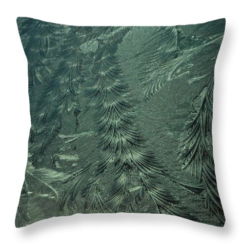 Ice Throw Pillow featuring the photograph Winter's Work 3 by SeaStarr Photography