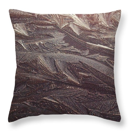 Ice Throw Pillow featuring the photograph Winter's Work 4 by SeaStarr Photography