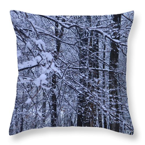 Wintery Day In Maryland Throw Pillow For Sale By Emmy Vickers
