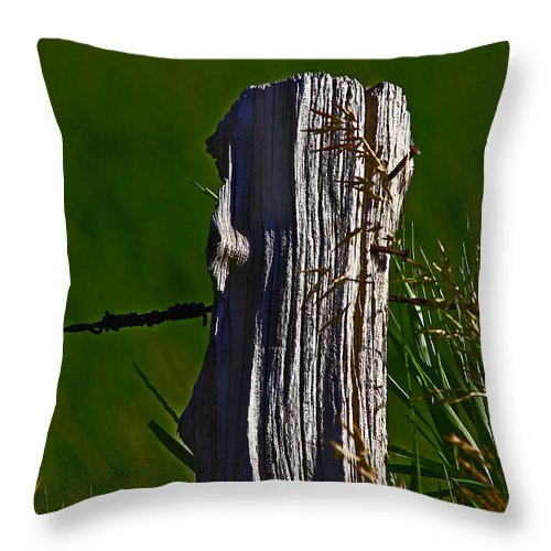 Nature Throw Pillow featuring the photograph Wired by David Kehrli