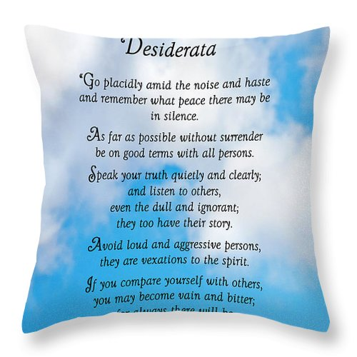 Desiderata Throw Pillow featuring the photograph Wisdom From Above by Donna Proctor
