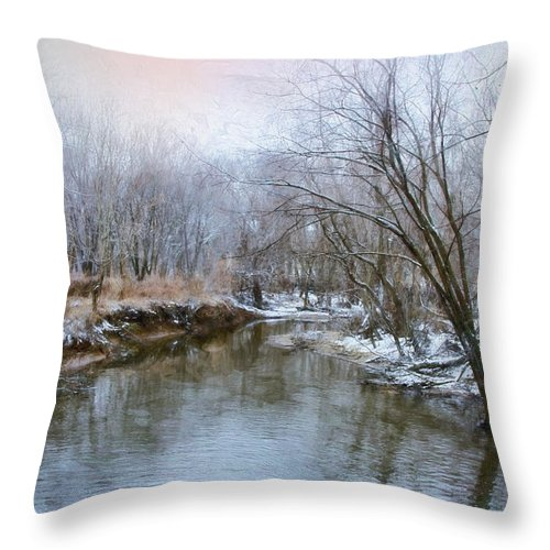 River Throw Pillow featuring the photograph Wish I Had A River by John Rivera