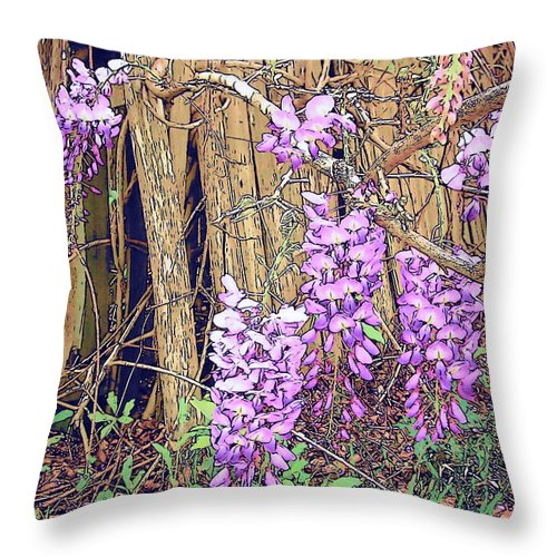Rebecca Korpita Throw Pillow featuring the photograph Wisteria And Old Fence by Rebecca Korpita