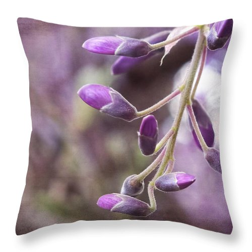 Wisteria Throw Pillow featuring the photograph Wisteria Beginnings by Melissa Bittinger