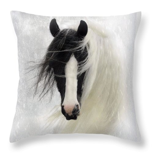 Horses Throw Pillow featuring the photograph Wisteria by Fran J Scott