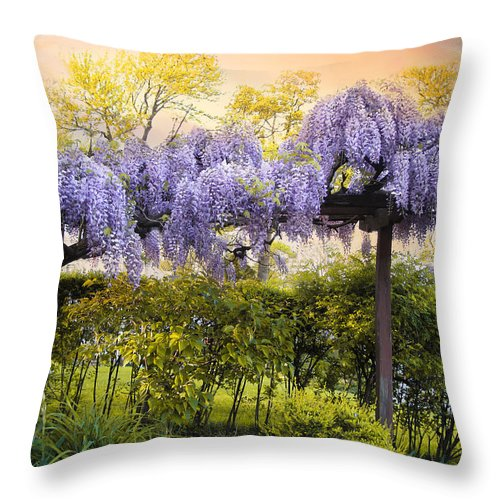 Wisteria Throw Pillow featuring the photograph Wisteria Trellis 2 by Jessica Jenney