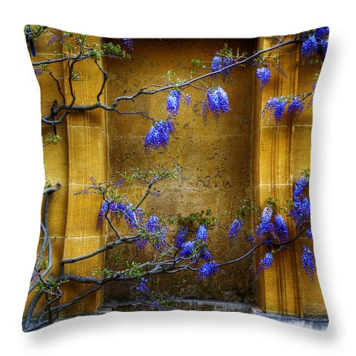 Wisteria Throw Pillow featuring the photograph Wisteria Wall by Mick House