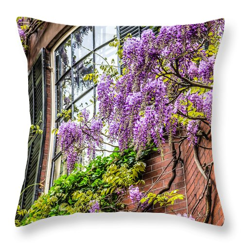 May Throw Pillow featuring the photograph Wisteria Windows by Susan Cole Kelly