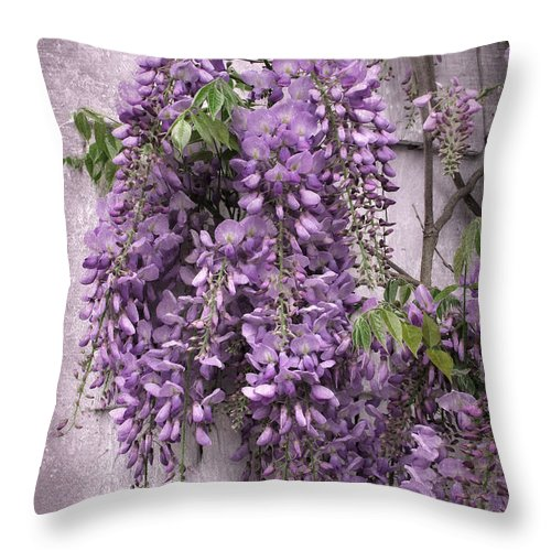 Flowers Throw Pillow featuring the photograph Wistful Wisteria by Jessica Jenney