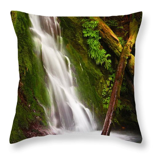 Landscape Throw Pillow featuring the photograph Wolf Creek Falls by Don Hall