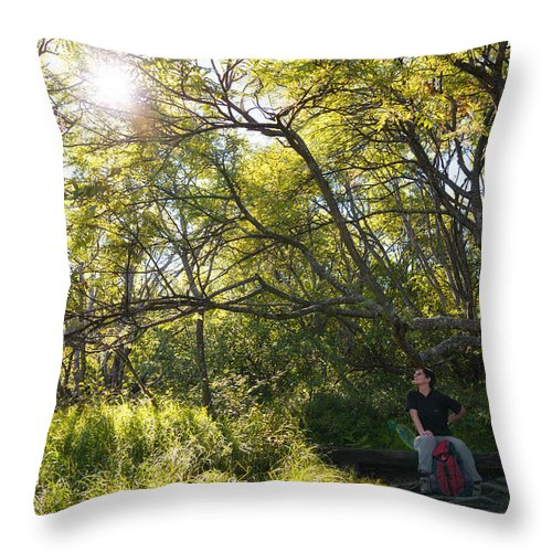Sun Throw Pillow featuring the photograph Woman Sitting On Bench - Bright Green Trees Sun Is Shining by Matthias Hauser