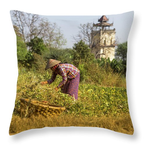 Three Quarter Length Throw Pillow featuring the photograph Woman Weeding At Nanmyin Tower by Merten Snijders