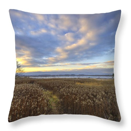 Nature Throw Pillow featuring the photograph Wonderful Sunset by Ivan Slosar