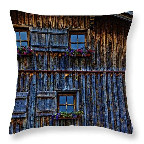Barn Throw Pillow featuring the photograph Wonderland-3 by Casper Cammeraat