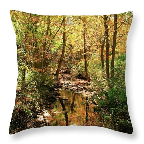 Woodland Brook Throw Pillow featuring the photograph Woodland Brook by Robert McCulloch
