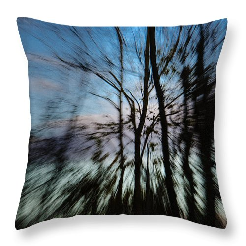 Trees Throw Pillow featuring the photograph Woodland Flight by Jennifer Kano