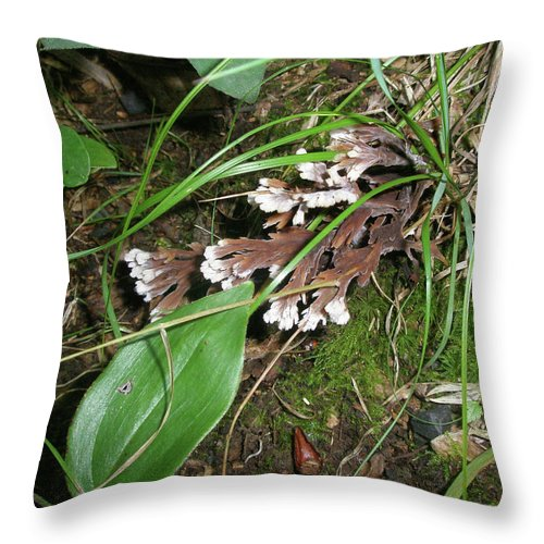 Woods Throw Pillow featuring the photograph Woodland Secret Garden by Mother Nature