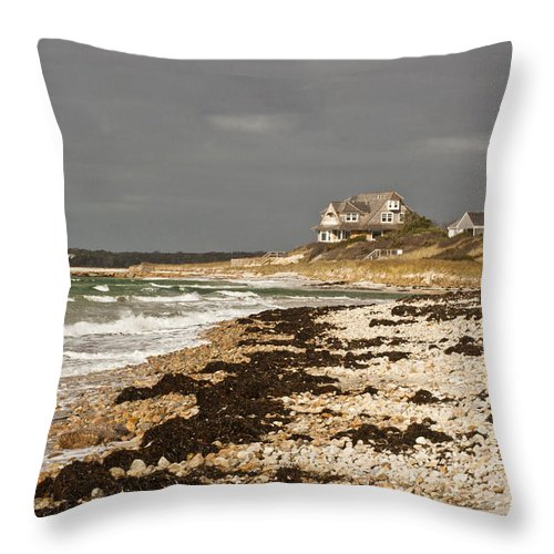Woodneck Beach Throw Pillow featuring the photograph Woodneck Beach by Dennis Coates