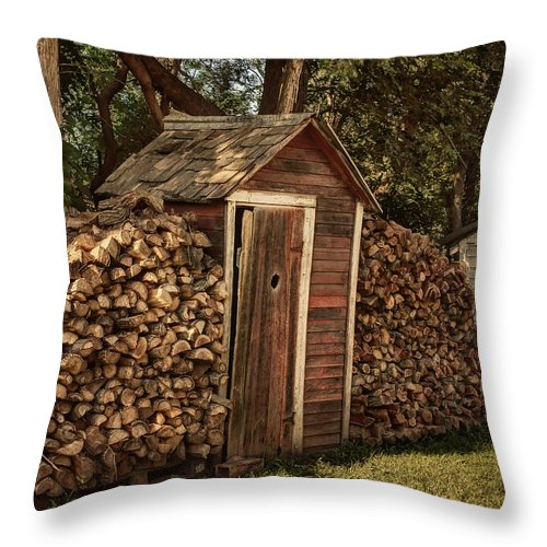 Sheds Throw Pillow featuring the photograph Woodpile And Shed by Nikolyn McDonald