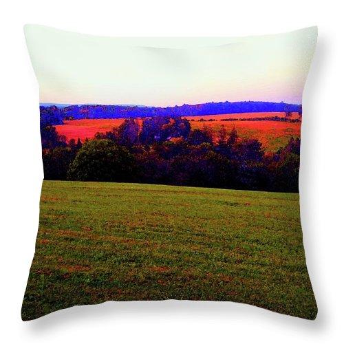 Yasgur Throw Pillow featuring the photograph Woodstock - Farm - Yasgurs by Susan Carella