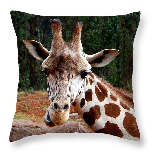 Giraffe Throw Pillow featuring the photograph Wuz Up Dude by Nancy Bradley