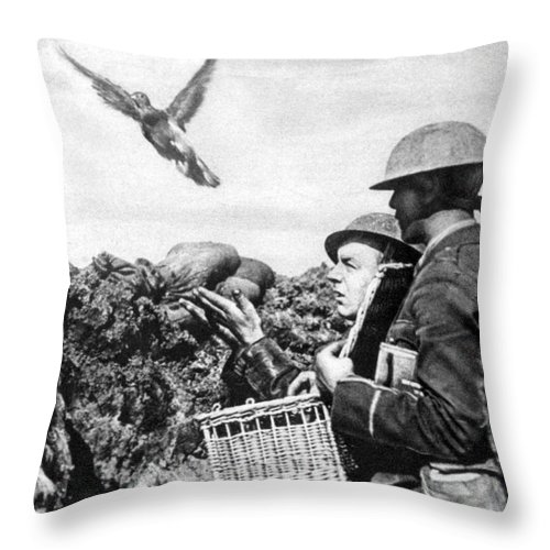 World War One Throw Pillow featuring the photograph Wwi Releasing British Carrier Pigeon by Photo Researchers