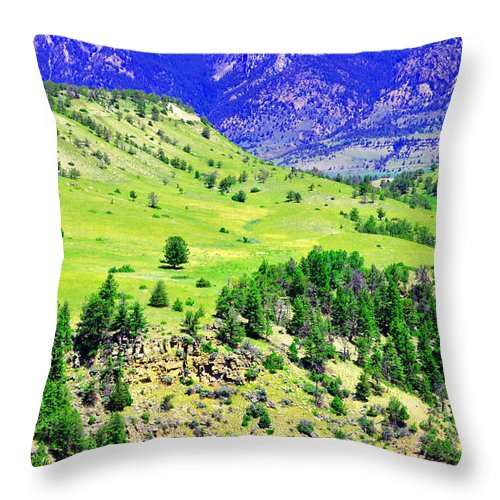 Wyoming Throw Pillow featuring the photograph Wyoming Hillside by Lisa Holland-Gillem